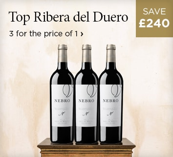 Top Ribera del Duero - The purest and freshest you'll find - £240